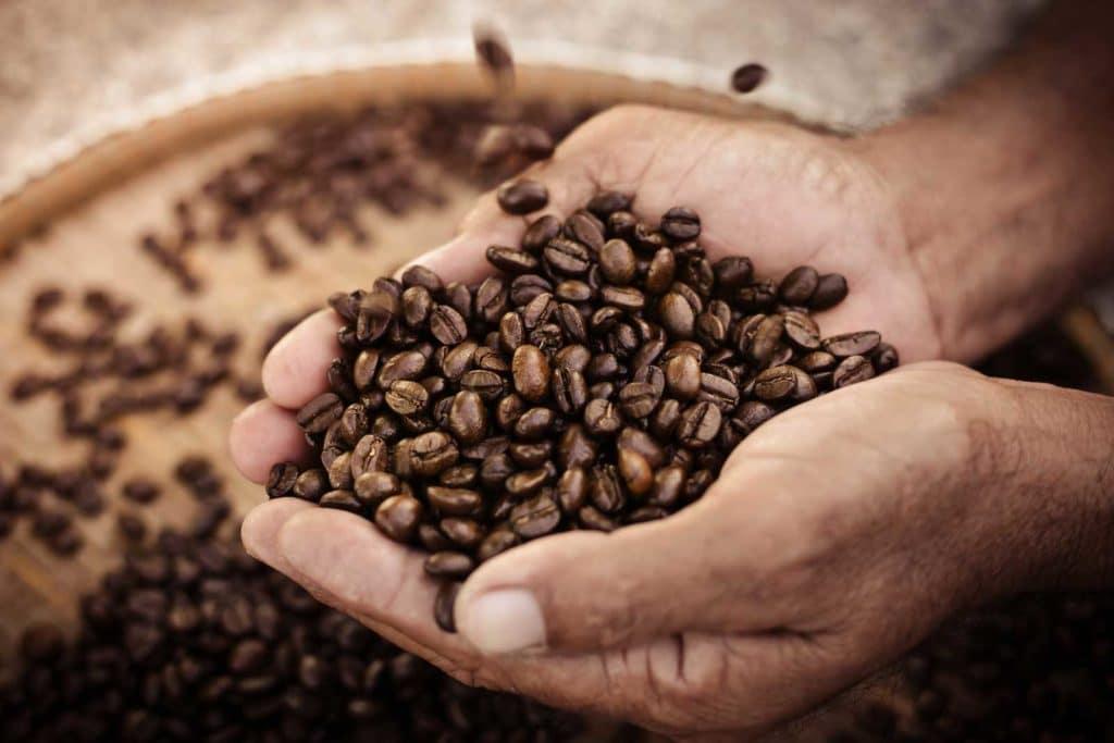 Kaffeebohnen-1600x1067